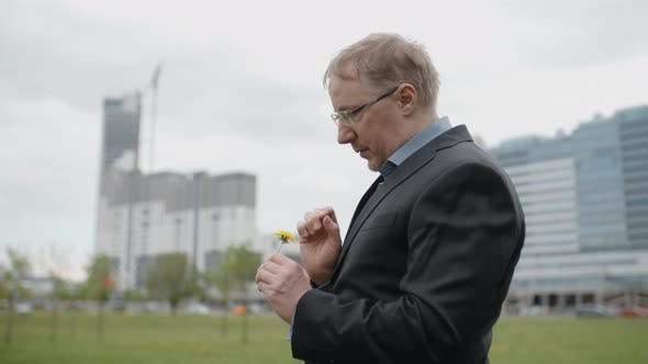 Cover Image for Disappointed Man in Suit Tearing Off Dandelion Flower Petals Outside Office, Upset Manager