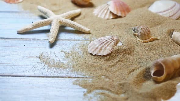 Sea Shells and Starfish on a Blue Wooden Background and Sand