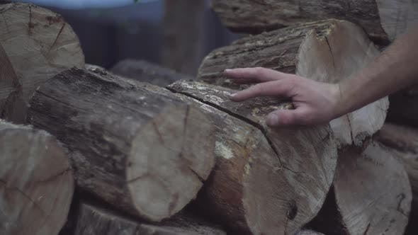 Thumbnail for Man's Hand Feels the Wood Structure of Oak Firewood Blocks Stored for Winter in a Stack.
