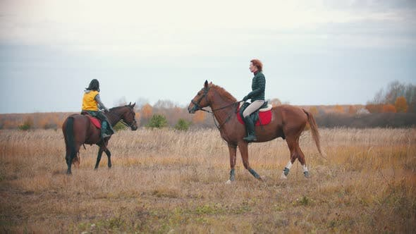 Two Women Are Riding Bay Horses in Circle Holding Them on the Reins