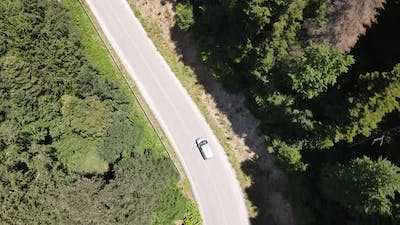 Car Traveling Middle Forest