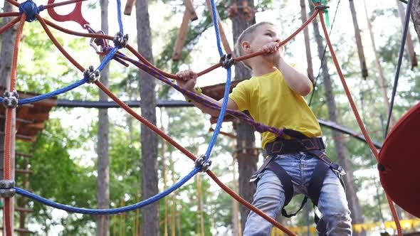 Little Boy Overcomes Obstacles Between Trees at a Height in the Rope Park