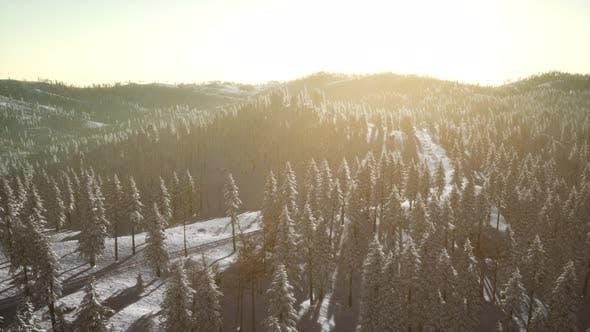 Thumbnail for Paysage d'hiver lumineux par la lumière du soleil dans le matin
