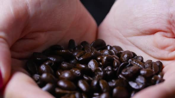 Thumbnail for Revealing Female Hands Holding A Bunch Of Brown Coffee Beans