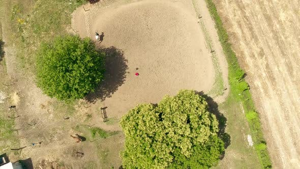 Horse Riding Lesson Top View