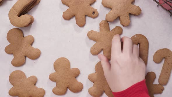 Thumbnail for Decorating gingerbread cookies with royal icing for Christmas.