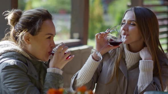 Thumbnail for Young Women Enjoying Wine and Talking Outdoors
