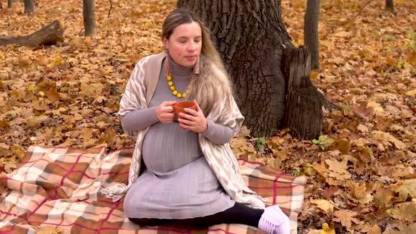 Thumbnail for Eine schwangere Frau sitzt unter einem Baum in einem Herbstwald auf einem Plaid und trinkt heißen Tee. Gelbe Blätter