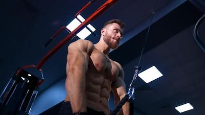 Bodybuilder working out in gym. Muscular bodybuilder guy doing exercises in gym