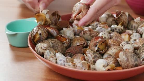 Thumbnail for Steamed snail dish