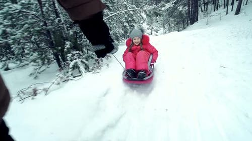 Snow Day Sledging