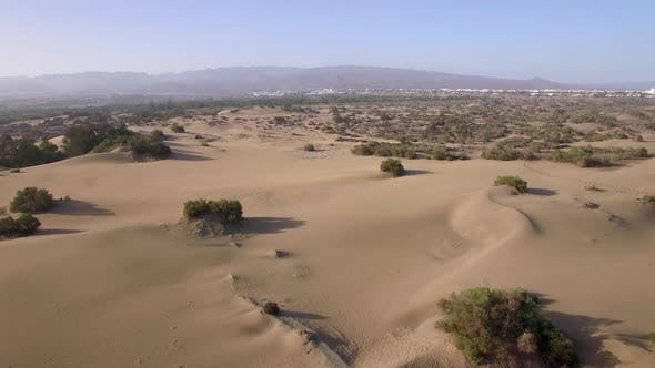 Thumbnail for Aerial Landscape with Sand and Plants