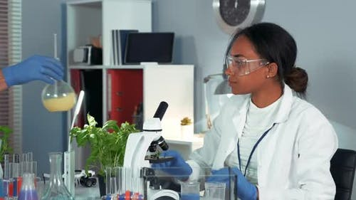 Multiracial Female Scientist in Safety Glasses Using Colleague's Chemical Liquid in Flask in Her