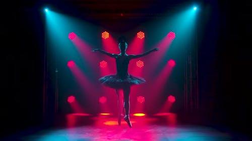 Силуэт изящной балерины в шикарном образе черного лебедь. Танцы Элементов Классическая