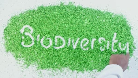 Green Hand Writing   Biodiversity