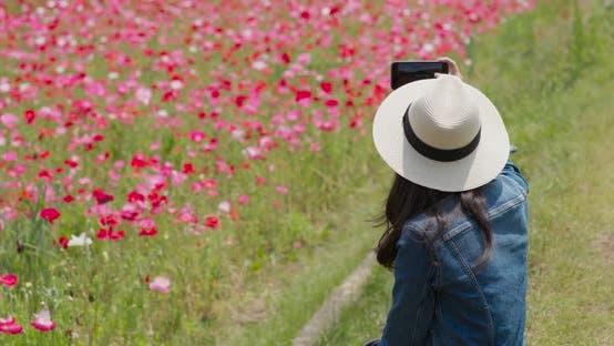 Thumbnail for Woman take photo on poppy flower garden