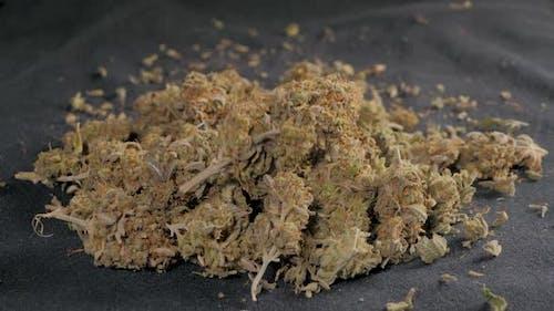 Medical Marijuana Flower Buds Cannabis Background Marijuana Weed Buds Drop Legalization Coffee Shop