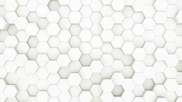 Thumbnail for White Hexagon