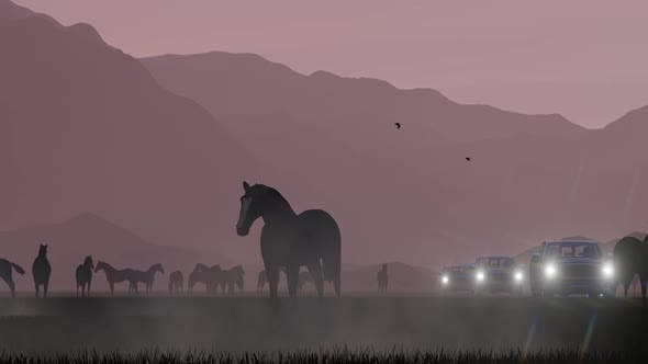 Thumbnail for Pickup Convoy Coming From Wild Horses Grazing In Foggy Weather