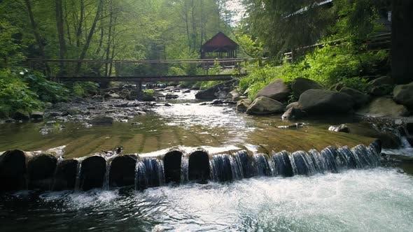 Thumbnail for Beautiful River in Carpathian Mountains