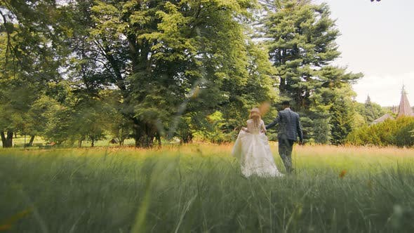 Young Wedding Couple in Love Newlyweds Walking in a Fabulous Sunny Park on a Background of Green