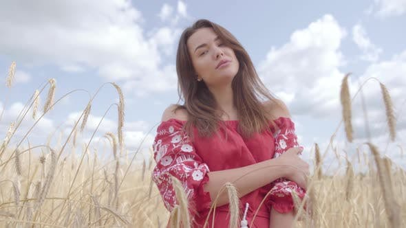 Thumbnail for Portrait of an Attractive Woman with Long Hair Posing on the Wheat Field