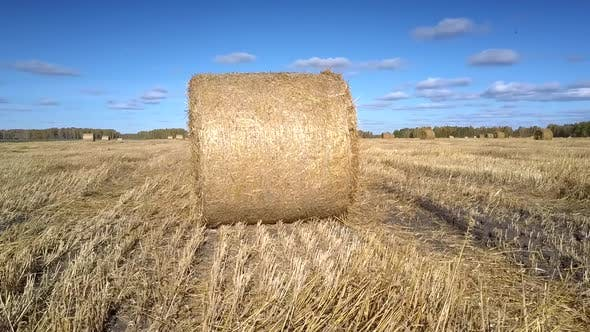 Thumbnail for Close View Huge Straw Roll Shines in Sunlight on Vast Field