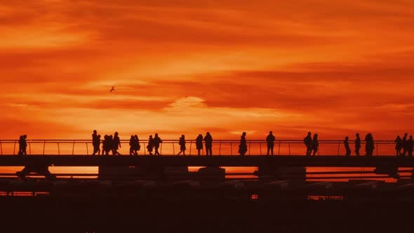 The Sunset Commuters