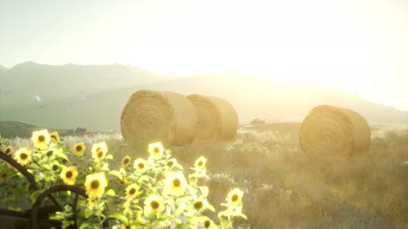 Hay Bales in the Sunset