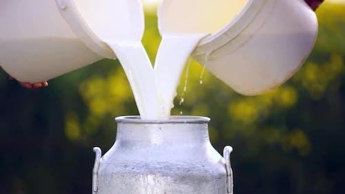 Landwirt gießt Milch