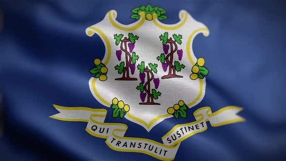 Connecticut State Flag Front