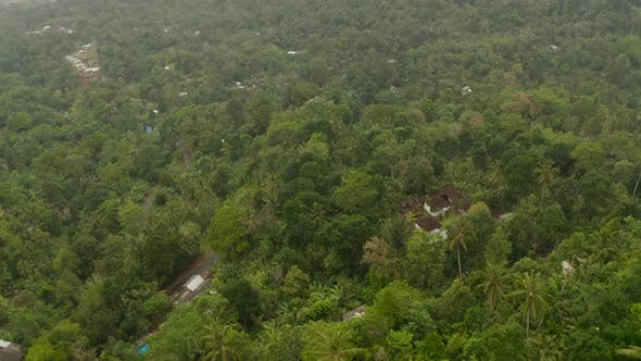 Aerial View of a House in the Jungle