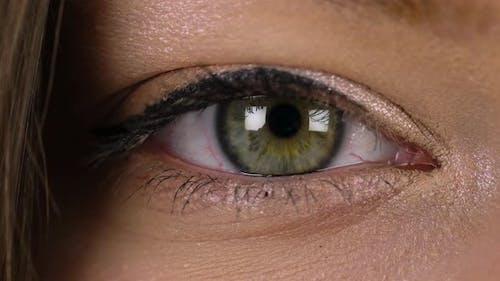 Macro Closeup Eye Blinking