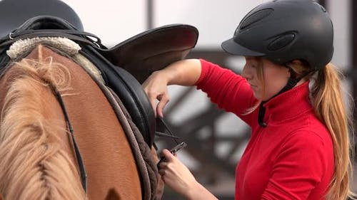 Young Woman Saddles a Horse Outdoors