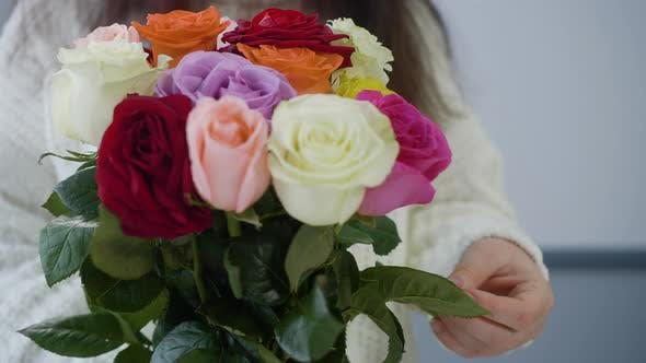 Thumbnail for Close Up Female Hands Holding Colorful Roses Bouquet