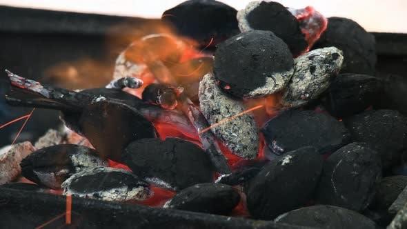 Thumbnail for Coal