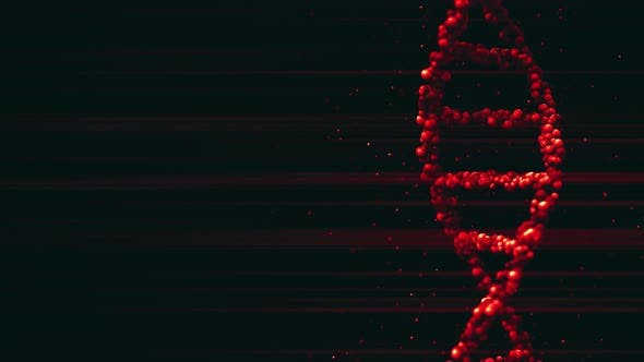 Cover Image for Red DNA Molecule Model