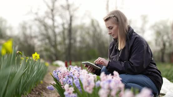 Cover Image for Female Researcher Walking While Examining Tulips At Field