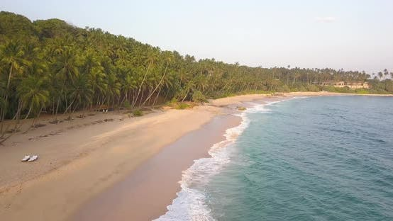 Thumbnail for Ocean Waves at Sunset. Sri Lanka. Beautiful Tropical Beach with Palm