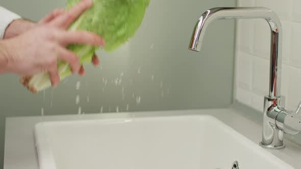 Thumbnail for One person washing lettuce
