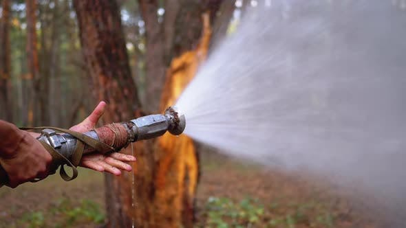 Thumbnail for Men's Hands Hold a Fire Hose From Which Water Runs Under Pressure in Pine Forest