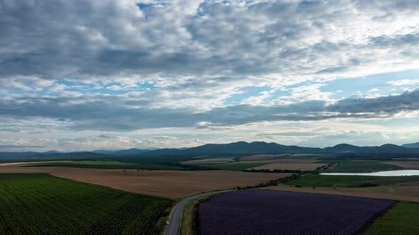 Aerial Hyperlapse Above Agricultural Plantations