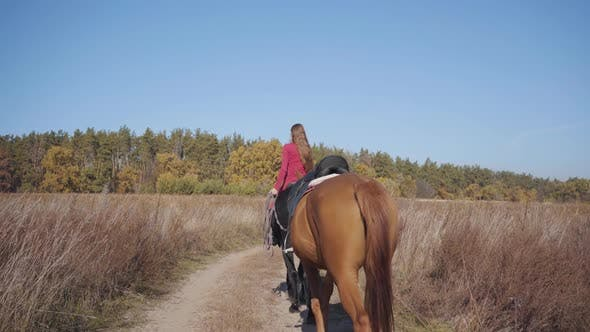 Thumbnail for Back View of a Young Caucasian Female Equestrian Riding the Black Horse on the Dirt Road and Holding