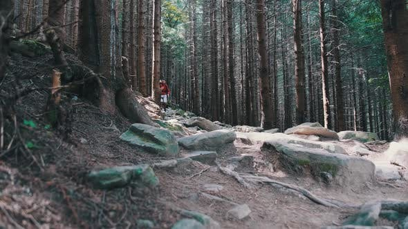 Thumbnail for Tourist with a Backpack Goes Down the Stone Mountain Trail in the Forest