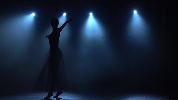 Thumbnail for Delightful Ballerina in Tutu Dancing Classical Ballet Elements. Slow Motion.