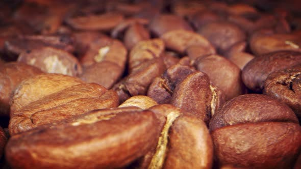 Roasted Coffee Beans 5