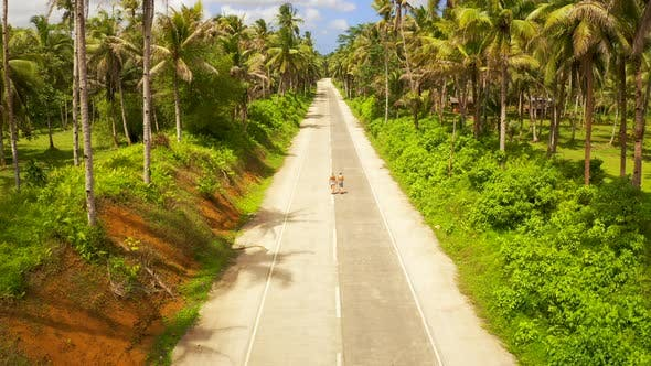 Cover Image for Aerial View of Young Couple of Tourists Walking on the Road Among Coconut Palms. Bali Island