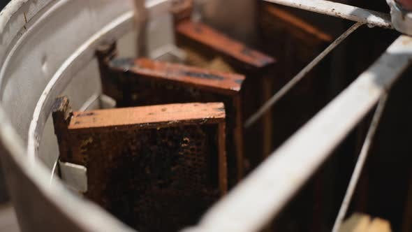 Removal of Honey From the Honeycomb
