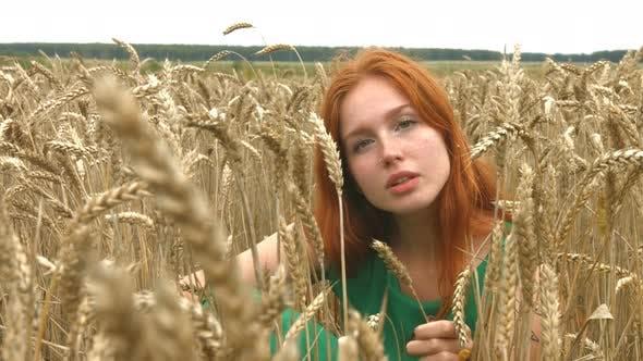 Thumbnail for Walk on Wheat Field