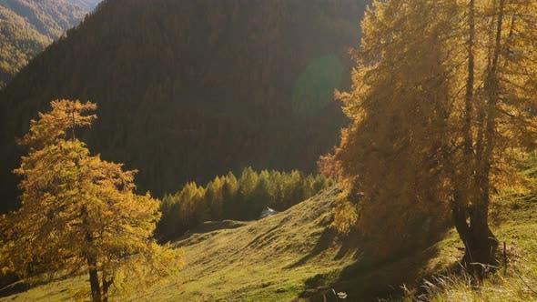 Thumbnail for Beautiful Autumn European Alps